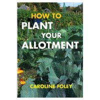 How To Plant Your Allotment
