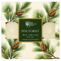 RHS Tealights Pine Forest