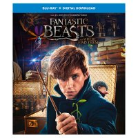 DVD Blu Ray Fantastic Beasts and Where to Find Them