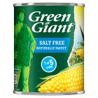 Green Giant canned naturally sweet sweetcorn -no added sugar - drained 165g Brand Price Match - Checked Tesco.com 02/09/2015