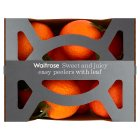 Waitrose clementines with leaf - 750g