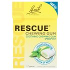 Bach chewing gum spearmint - 17s Brand Price Match - Checked Tesco.com 26/08/2015