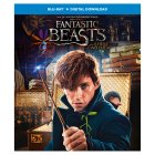 DVD Blu Ray Fantastic Beasts and Where to Find Them -