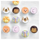 Fiona Cairns Animal Cupcakes - 12s