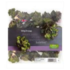 Waitrose flower sprouts - 160g