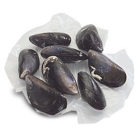Waitrose MSC fresh Scottish rope grown mussels