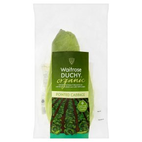 Waitrose Duchy Organic pointed cabbage