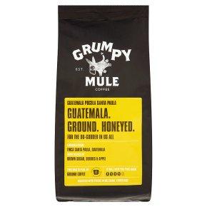 Grumpy Mule coffee Guatemala pocola