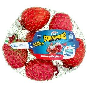 Munch Bunch Squashums Yogurt Strawberry Raspberry