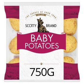 Scotty Brand Potatoes