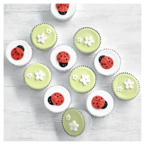 Fiona Cairns Ladybird and Blossom Cupcakes