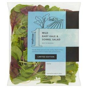 Waitrose 1 Mild Baby Kale & Sorrel Salad