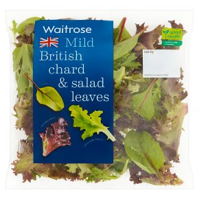 Waitrose Mild British Chard & Salad Leaves