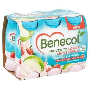 Benecol Yogurt Drink Cranberry & Apple
