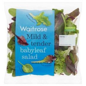Waitrose babyleaf salad