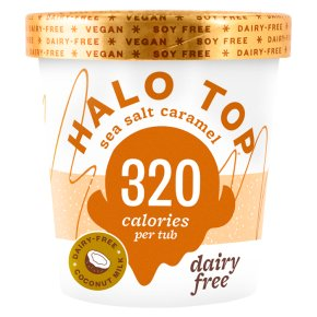 Halo Top Dairy Free Sea Salt Caramel