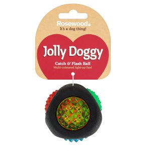 Rosewood Jolly Doggy Catch & Flash Ball
