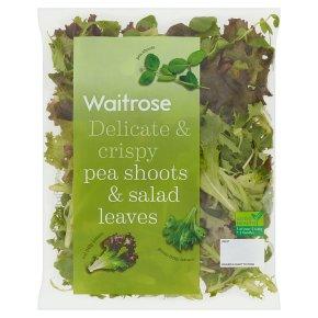 Waitrose British Peashoots & Salad Leaves