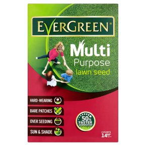 Evergreen Multi Purpose Lawn Seed