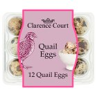 Clarence Court British free to fly quail's eggs - 12s